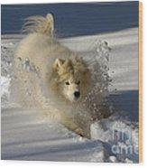 Snowplow Wood Print by Lois Bryan