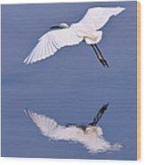 Snowy Egret In Flight Wood Print by Robert Jensen