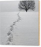 Snowy Path Wood Print by Diane Diederich