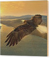 Soaring Eagle Wood Print by Ray Downing