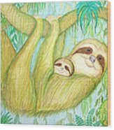 Soggy Mossy Sloth Wood Print by Nick Gustafson