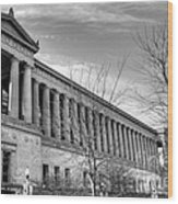 Soldier Field In Black And White Wood Print by David Bearden