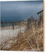 Solitude On The Cape Wood Print by Jeff Folger
