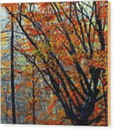 Song Of Autumn Wood Print by Karen Wiles