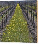 Sonoma Mustard Grass Wood Print by Garry Gay