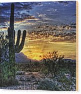 Sonoran Sunrise  Wood Print by Saija  Lehtonen