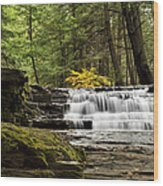 Soothing Waters Wood Print by Christina Rollo