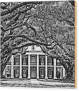 Southern Class Monochrome Wood Print by Steve Harrington