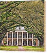 Southern Class Wood Print by Steve Harrington