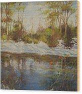 Southern Landscapes   Wood Print by Nancy Stutes