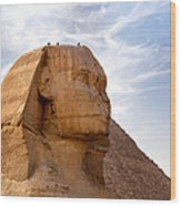 Sphinx Egypt Wood Print by Jane Rix