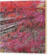 Splendid Fall Wood Print by Valia Bradshaw