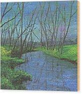 Spring Awakening II Wood Print by Garry McMichael