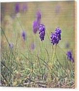 Spring Flowers Wood Print by Diana Kraleva