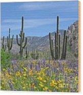 Spring Flowers In The Desert Wood Print by Elvira Butler