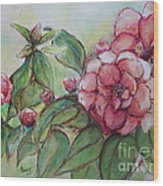 Spring Flowers Wet With Dew Drops Original Canadian Pastel Pencil Wood Print by Aeris Osborne