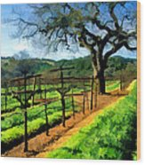 Spring In The Vineyard Wood Print by Elaine Plesser