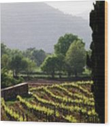Spring Vines In Provence Wood Print by Lainie Wrightson
