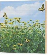 Springtime Wood Print by Diane Diederich