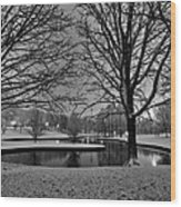 St. Louis - Winter At The Arch 001 Wood Print by Lance Vaughn
