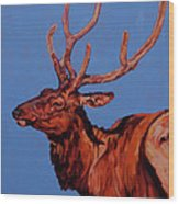 Stag Wood Print by Patricia A Griffin