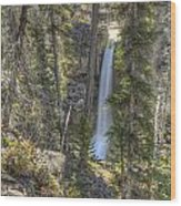 Stanley Falls At Beauty Creek Wood Print by Brian Stamm