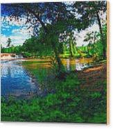 Starrs Mill 360 Panorama Wood Print by Lar Matre