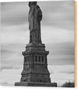 Statue Of Liberty National Monument Liberty Island New York City Wood Print by Joe Fox