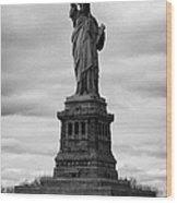 Statue Of Liberty National Monument Liberty Island New York City Usa Wood Print by Joe Fox