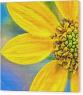 Stone Mountain Yellow Daisy Details - North Georgia Flowers Wood Print by Mark E Tisdale