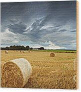 Straw Bales Pano Wood Print by Jane Rix