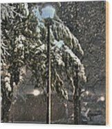 Street Lamp In The Snow Wood Print by Benanne Stiens