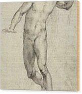 Study For The Last Judgement  Wood Print by Michelangelo  Buonarroti