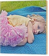 Summer Rest With Blueberries Wood Print by Valerie Garner