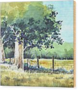 Summer Trees Wood Print by Rick Mock