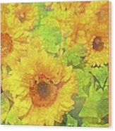 Sunflower 19 Wood Print by Pamela Cooper