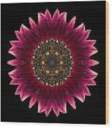 Sunflower Moulin Rouge I Flower Mandala Wood Print by David J Bookbinder