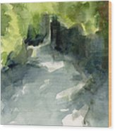 Sunlight And Foliage Conservatory Garden Central Park Watercolor Painting Wood Print by Beverly Brown