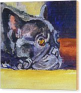 Sunny Patch French Bulldog Wood Print by Lyn Cook