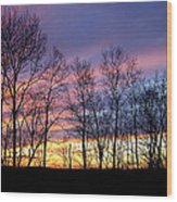 Sunset Of The Century Wood Print by Christina Rollo
