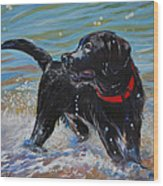 Surf Pup Wood Print by Molly Poole