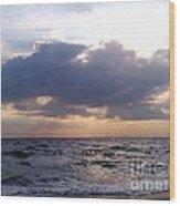 Swim Before Storm Wood Print by Patrick Mancini