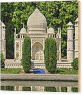 Taj Mahal Wood Print by Ricky Barnard