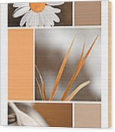 Tangerine Flowers Collage Wood Print by Christina Rollo