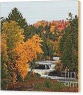 Taquamenon Falls Wood Print by Dipali S