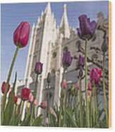 Temple Tulips Wood Print by Chad Dutson