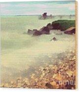 The Balaton Shore Wood Print by Odon Czintos