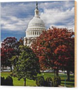 The Capitol Wood Print by Greg Fortier
