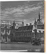 The Chateau  Wood Print by Maj Seda