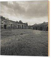 The Citadel At Fort Macomb Wood Print by David Morefield